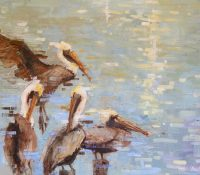 pelicans sitting by the water