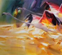 flamingoes taking flight
