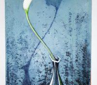 calla lily in a vase