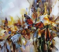 brown and yellow butterflies
