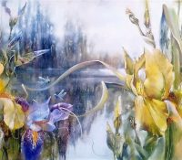 yellow irises and dragonflies